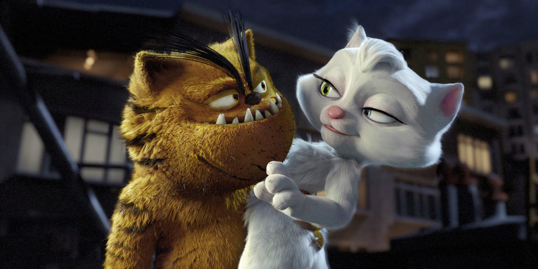video : Bad Cat Serafettin Trailer